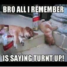 Turnt Up Meme - birthday turnt up meme turnt best of the funny meme