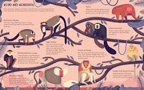 mad monkeys owen davey illustration