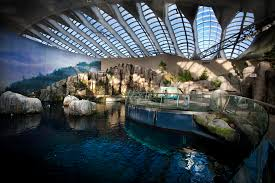 Kyma Restaurants Official Website Order Online Direct About The Biodôme Space For Life