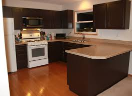 Behr Paint Kitchen Cabinets Advantage Cabinets Cheaper Than Ikea Tags Metal Kitchen Cabinets