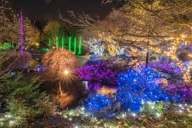 christmas light displays in virginia 10 best christmas light displays in virginia 2016