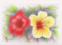 hawaiian flowers drawings free download clip art free clip art