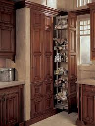 Pull Out Pantry Cabinets Pantries For An Organized Kitchen Diy
