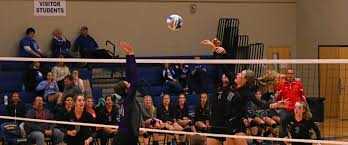 photo gallery from the west michigan conference 2015 volleyball
