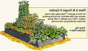 fabulous small backyard vegetable garden ideas rehbpmhs