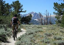 Nevada travel network images Tahoe rim trail stateline at lake tahoe the nevada travel network jpg