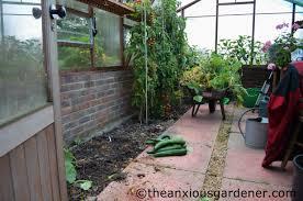 greenhouse maintenance the anxious gardener