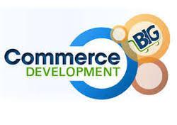 bigcommerce templates development service in naranpura ahmedabad