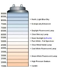 light bulb kelvin scale lighting terminology deductive reasoning
