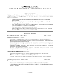 Functional Summary Resume Examples by Summary For Resume Examples Customer Service Free Resume Example