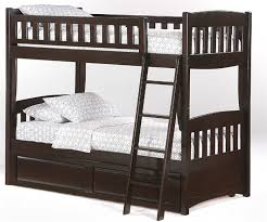 Bunk Beds Espresso Spices Collection Cinnamon Bunk Bed In Chocolate