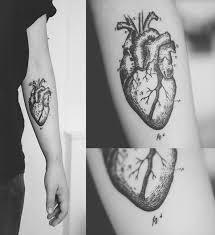 best 25 human heart tattoo ideas on pinterest human heart