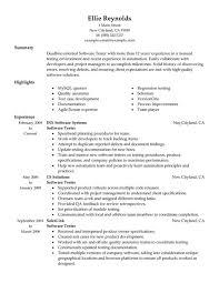 software developer resume sample cv template