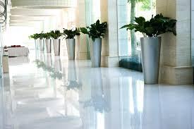 office design modern office plants modern office plants modern