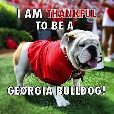 Georgia Bulldog Rugs The 84 Best Images About Georgia Bulldogs On Pinterest