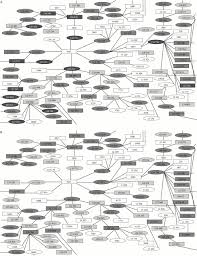 Grey And White Gonorrhoea And Chlamydia Core Groups And Sexual Networks In