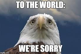 We Re Sorry Meme - sad american eagle imgflip