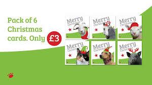 margaret green animal rescue home facebook