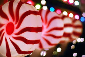 peppermint lights pictures photos and images for