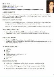 bca resume format for freshers pdf to excel writing an academic paper merchant loans advance resume sles