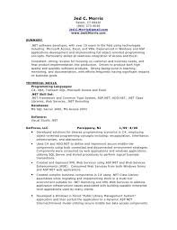 excel vba developer cover letter