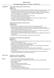 information technology resume exles information technology director resume sles velvet