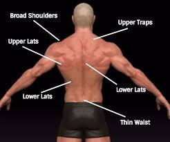 v shaped how to get a v shaped body at home stronger fitter and leaner