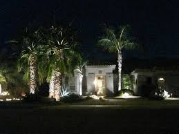 Decorate Palm Trees With Christmas Lights by Project Decoration Palm Tree Decorations