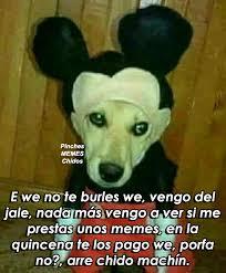 Pinches Memes - pinches memes chidos photos facebook