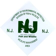 New Jersey wildlife tours images Njdep division of fish wildlife new jersey 39 s wildlife jpg