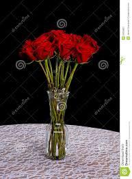 Long Stem Rose Vase Long Stem Rose U0027s In A Vase Royalty Free Stock Photography Image