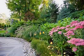 Backyard Plants Ideas Landscaping Ideas By Nj Custom Pool Backyard Design Expert
