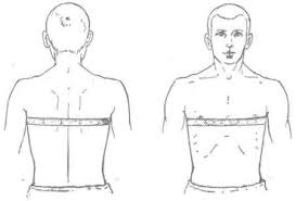 how can i determine measure the circumference of the chest in