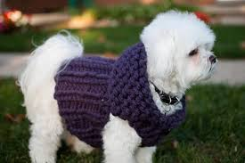 stay warm u0026 cozy with these free chunky knitting patterns