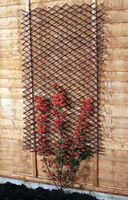 expanding trellis fencing willow expandable lattice
