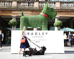 macy s state street clothing shoes jewelry department store macy s welcomes radley handbags