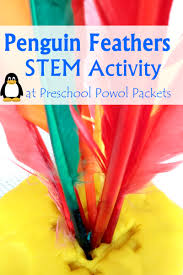 thanksgiving science activities penguin feather science stem with preschoolers preschool powol