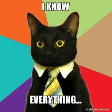 Everything Meme - i know everything business cat make a meme