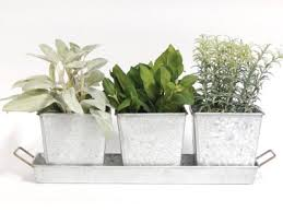 amazon com herb planter kit garden u0026 outdoor