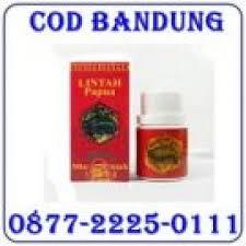jual minyak oil lintah papua di bandung 0877 2225 0111 resto cafe