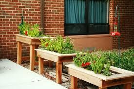 balkon hochbeet hochbeet für balkon selber bauen und bepflanzen 20 tipps