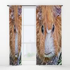 and pets window curtains society6