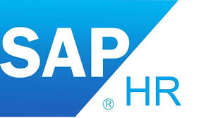 5 hr class online sap hr in puneit placement it consultancy it