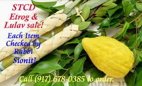 sukkot for sale etrog lulav sale sephardic torah center of dallas