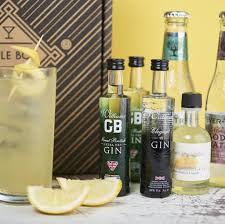 tom collins bottle craft gin and tonic cocktail set by tipple box