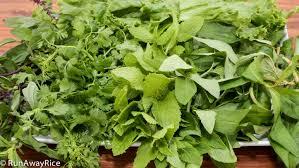 herb quick guide to vietnamese herbs runawayrice