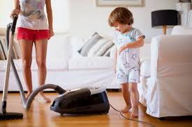 The 7 Best Upright Vacuums To Buy