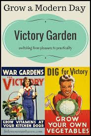 the 25 best victory garden ideas on pinterest victory