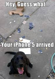 Dog Phone Meme - dog chewed up your cell phone dump a day