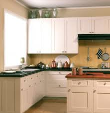 Kitchen Cabinet Update Update Flat Panel Kitchen Cabinet Doors Thermofoil White Stainles